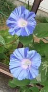 20100813_2